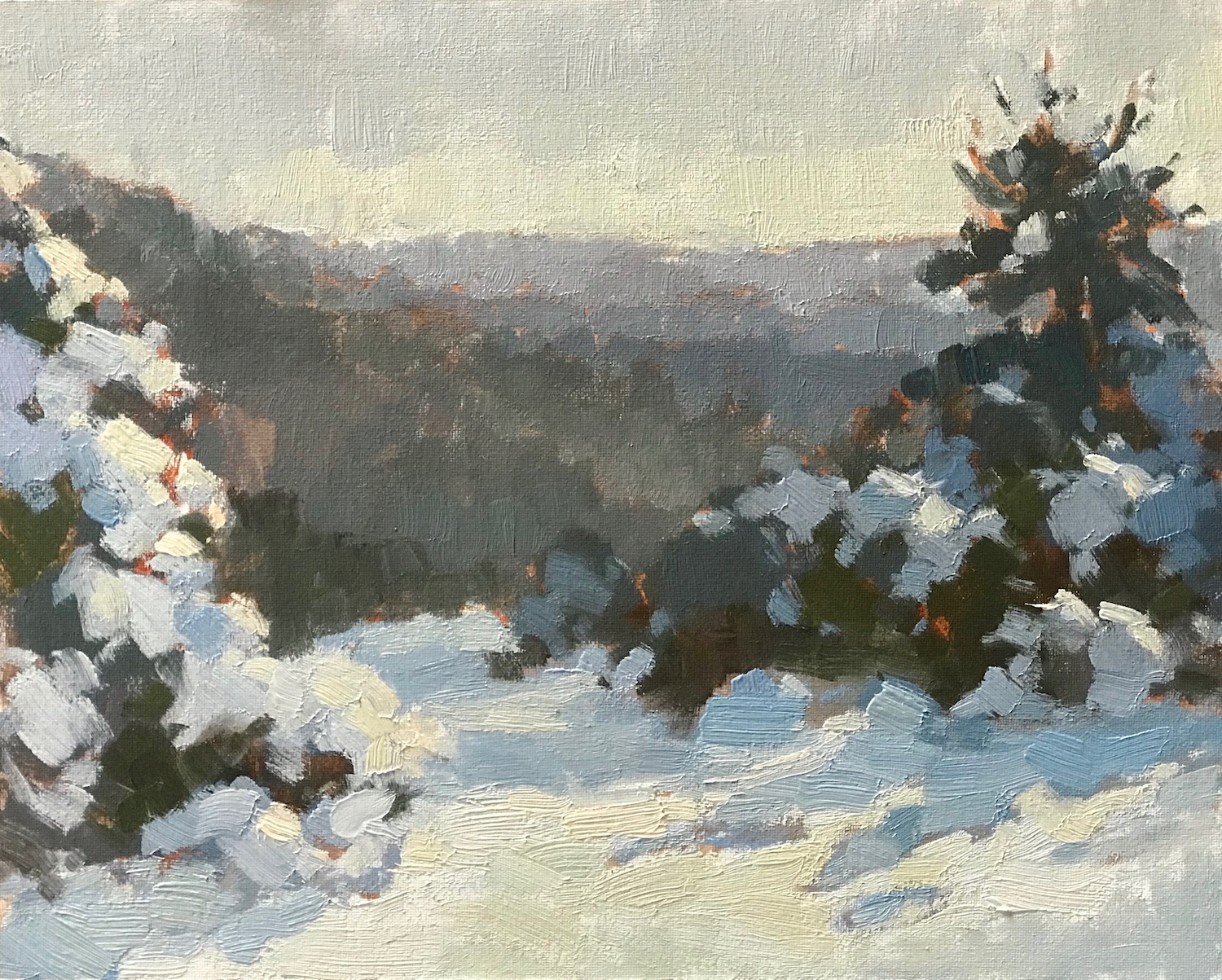 Gorse in Snow, The Punch Bowl 24x30cm