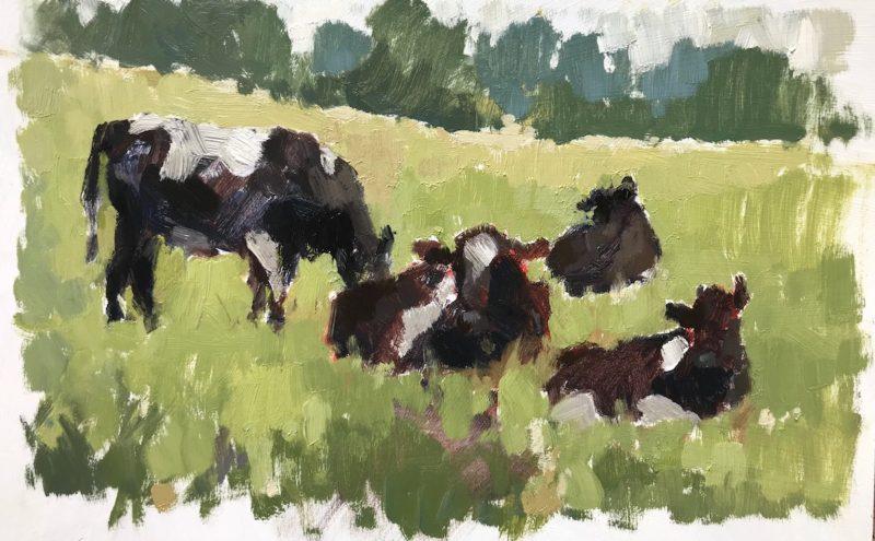 #464 Cow Study